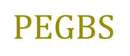 PEGBS projekt